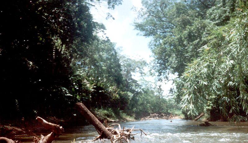 Biosfera Rio Platano