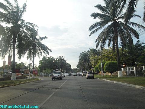 Ceiba Hondura la