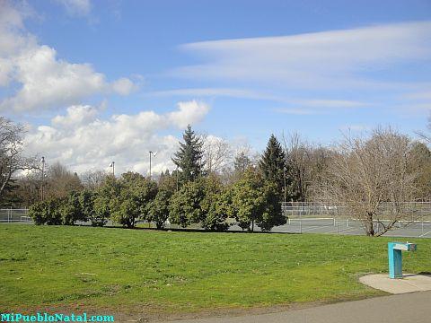 Bear Creek Park