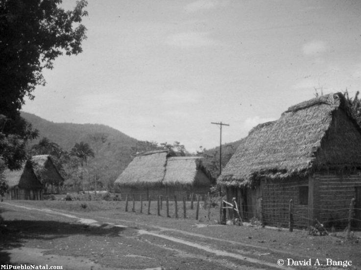El Cabildo 1961