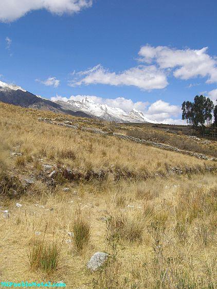 Donde Esta Peru