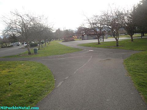 Fichtner Mainwaring Park