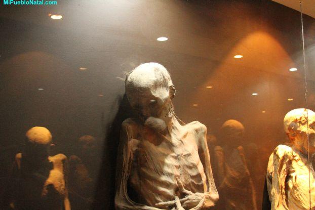Guanajuato Mummy