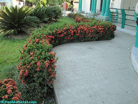 Jardin del Cabildo
