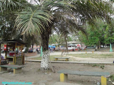 Imagenes De La Lima