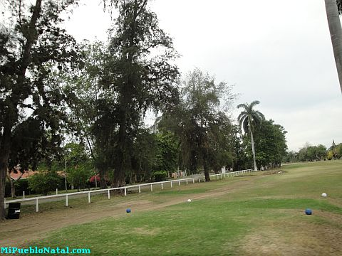 Imagen De La Lima
