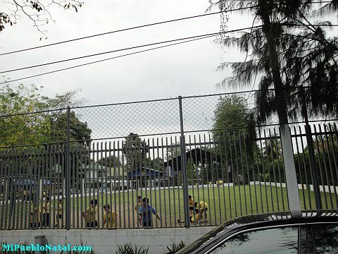 Imagenes De La Lima Honduras