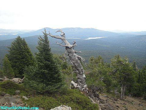 Mount Mcloughlin Cascade Range