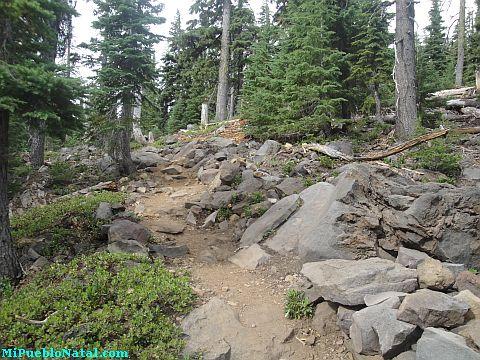 Mount Mcloughlin Pics
