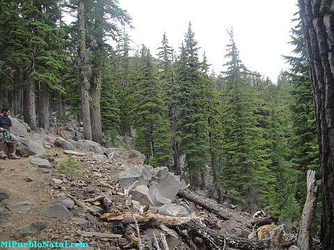 Mount Mcloughlin Images
