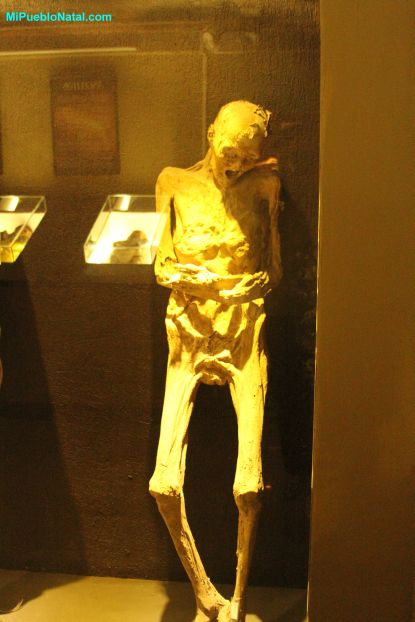 Mummies Information