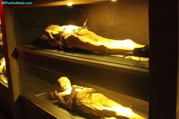 mummy case pictures