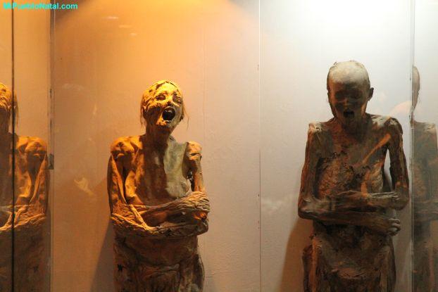 Mummy Musseum