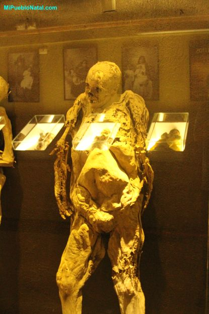 Museum Mummy Exhibit