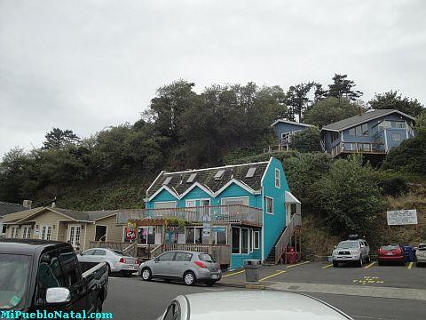 Newport Homes