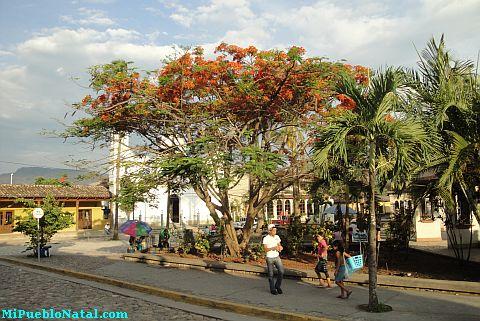 Fotografia del Parque de Copan Ruinas
