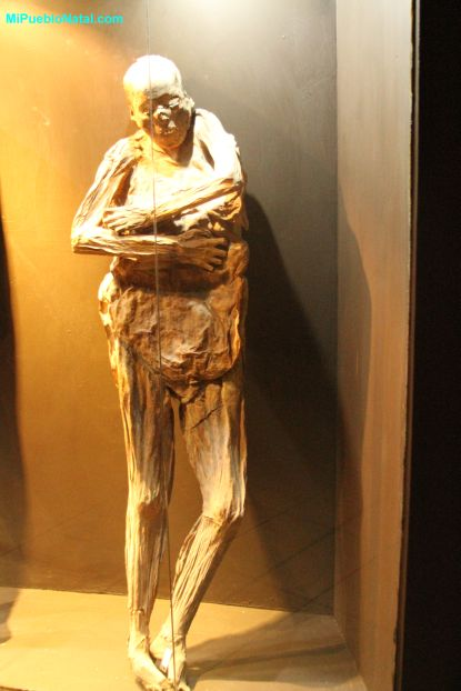 photos of mummy