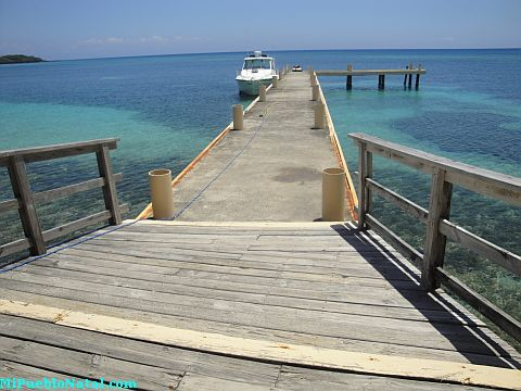 roatan blogs