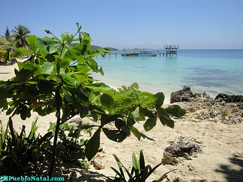 roatan review
