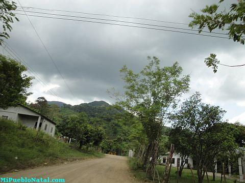 Fotografias de Taujica