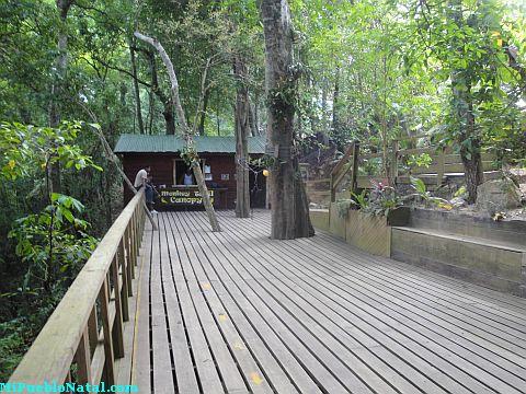canopy tours Roatan