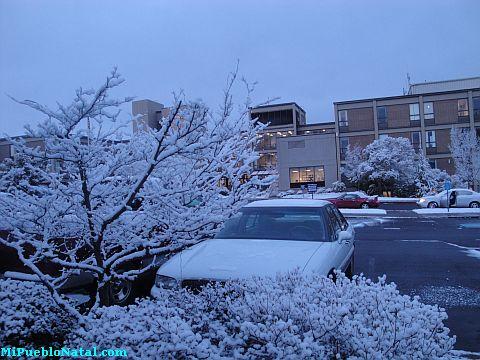 snow scenes pictures