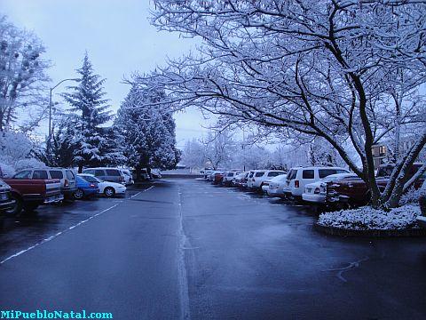 snow storm pictures