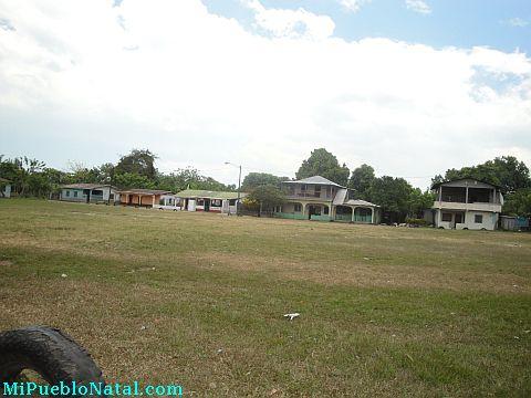 Taujica Honduras