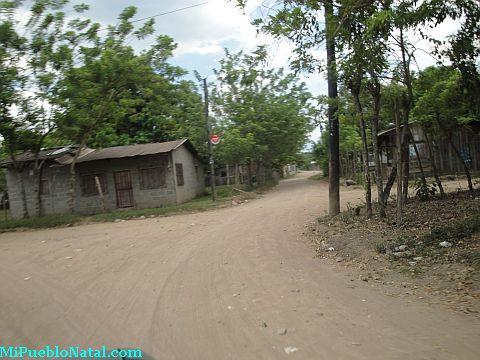 Taujica aldea