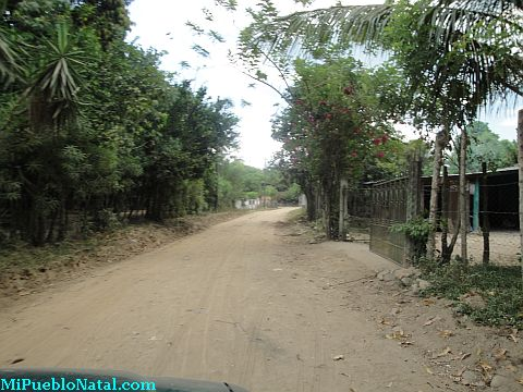 Comunidad de Taujica