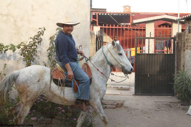ton en caballo