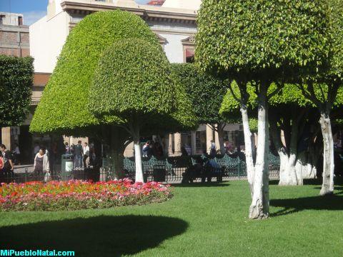 La Plaza de Leon